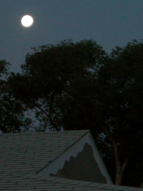 moon over cottonwoods and roof new mexico photograph