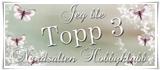 """Jeg ble """"Topp 3"""" hos Nordsalten Hobbyklubb:"""