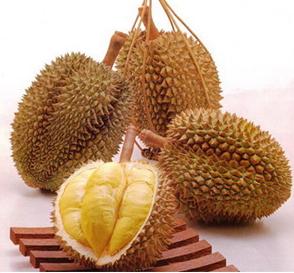 Khasiat dan Kandungan Durian Untuk Kesehatan