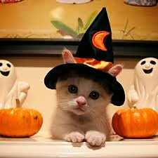 Happy Halloween, Happy Halloween greetings, Happy Halloween message