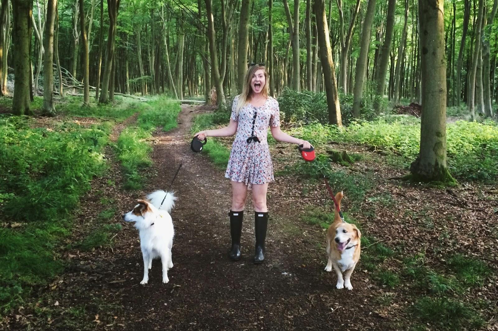 hampshire lifestyle blog