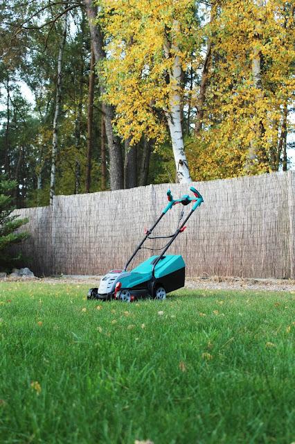jakie prace wykonujemy w ogrodzie jesienią