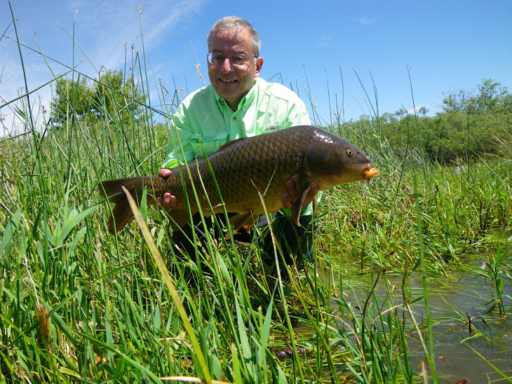 Got backing formerly known as mr p 39 s blog grass carp for Fly fishing carp