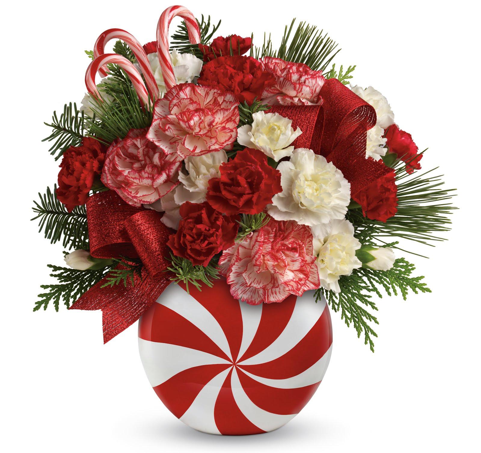 http://3.bp.blogspot.com/-aRkjGxYGF7w/UM0nvqDpq0I/AAAAAAAAfeI/wlqGMyT3fm8/s1600/Peppermint%20Christmas%20Bouquet.jpg