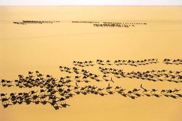 pedagang di Fachi, Niger