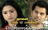 vellai thamarai Vellai Thamarai 29 02 2013 Sun Tv Serial | Vellai Thamarai 29.02.2013