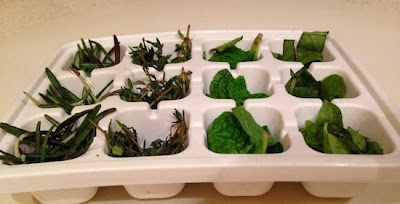 truco hierbas aromaticas