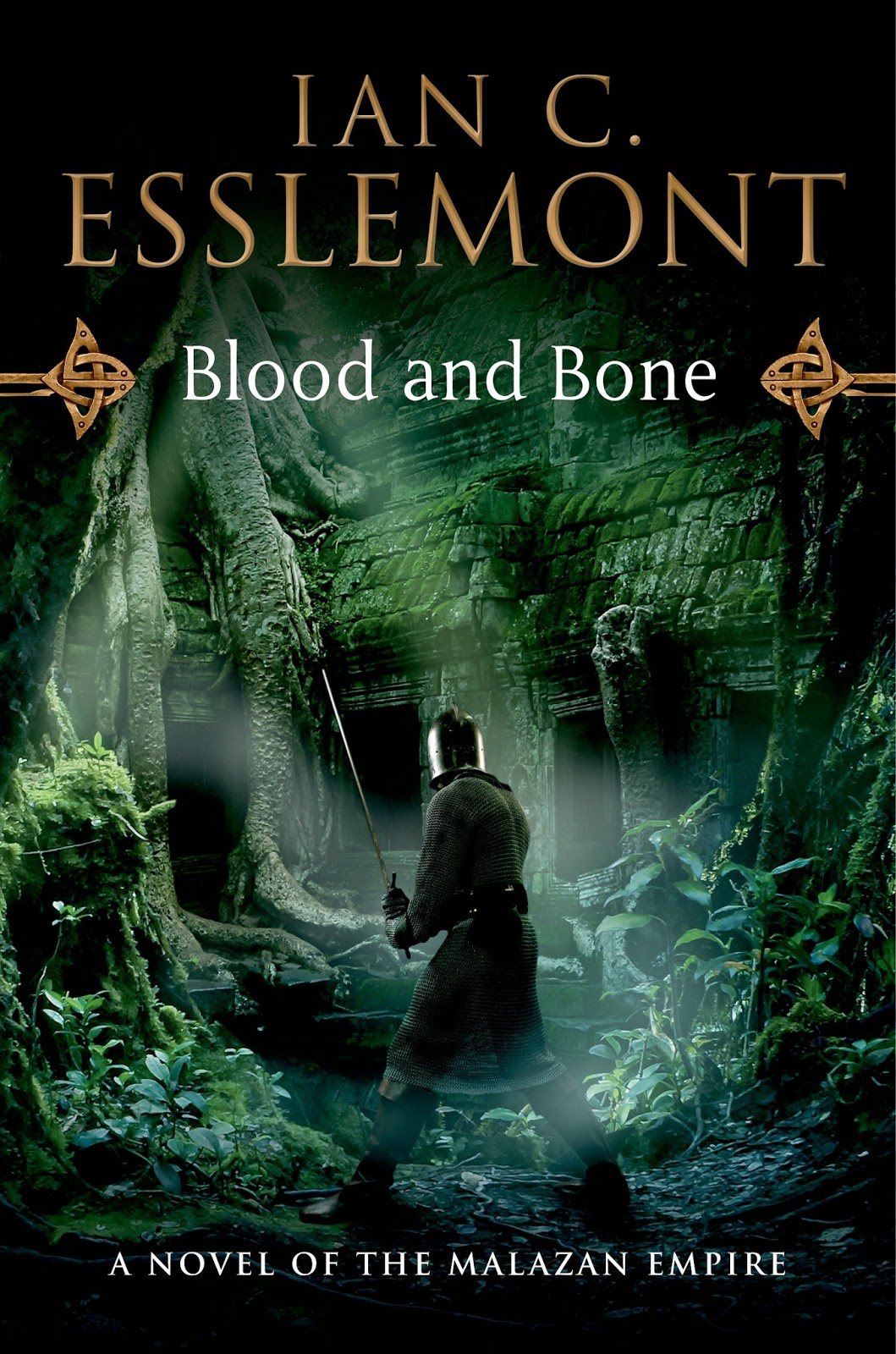 ... flock together: Microreview [book]: Blood and Bone by Ian C. Esslemont