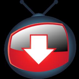 Download YTD Video Downloader 4 8 4 full free setup download   YTD