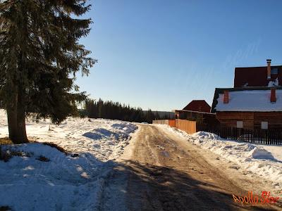 Drum spre Partie de Schi Bucin