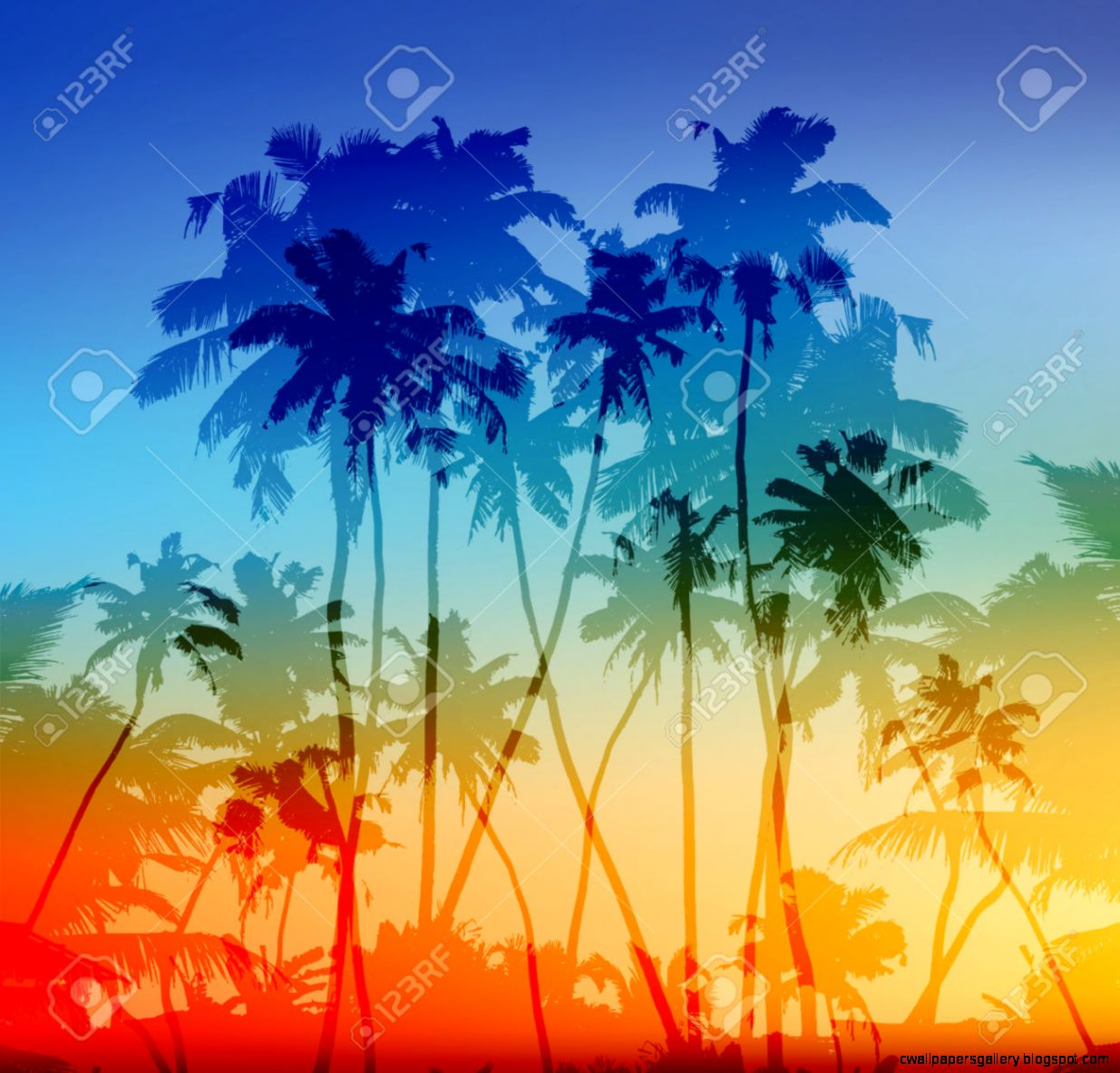 Vector Palms Silhouettes Tropical Sunset Background Royalty Free