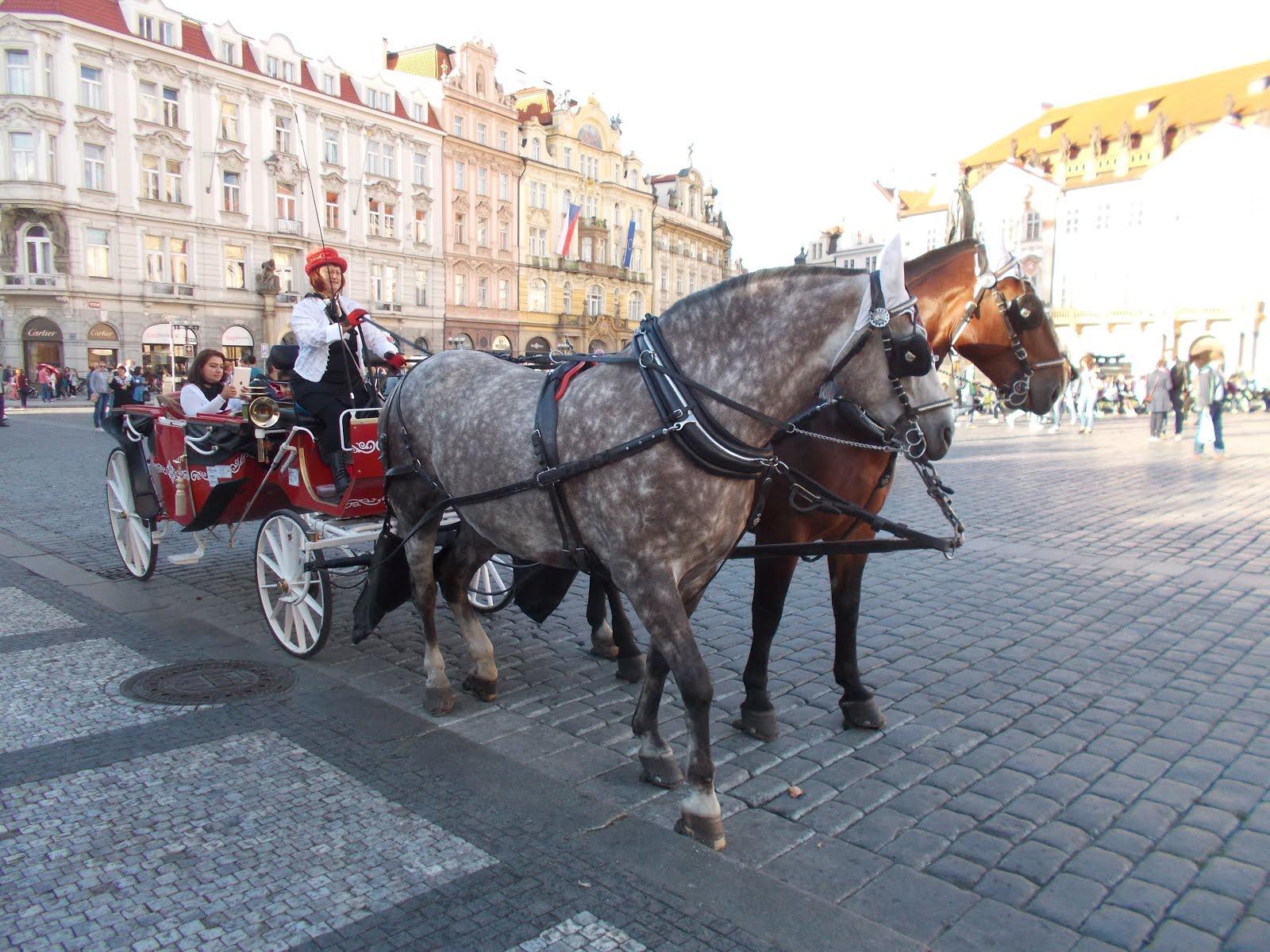 Horse Carriage rides in Prague Old Town Square.