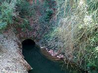 Boca nord de la Mina del Mas de les Coves
