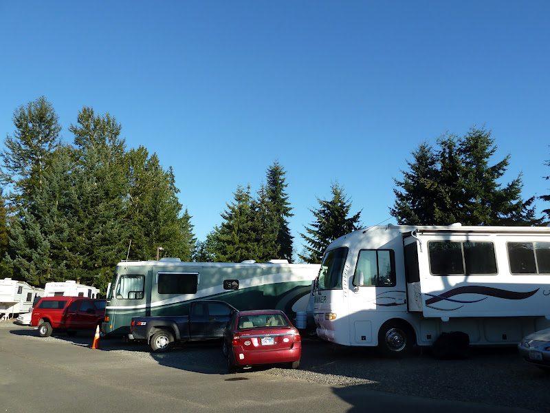 Munday S The Arizona Roadrunners Twin Cedars Rv Park