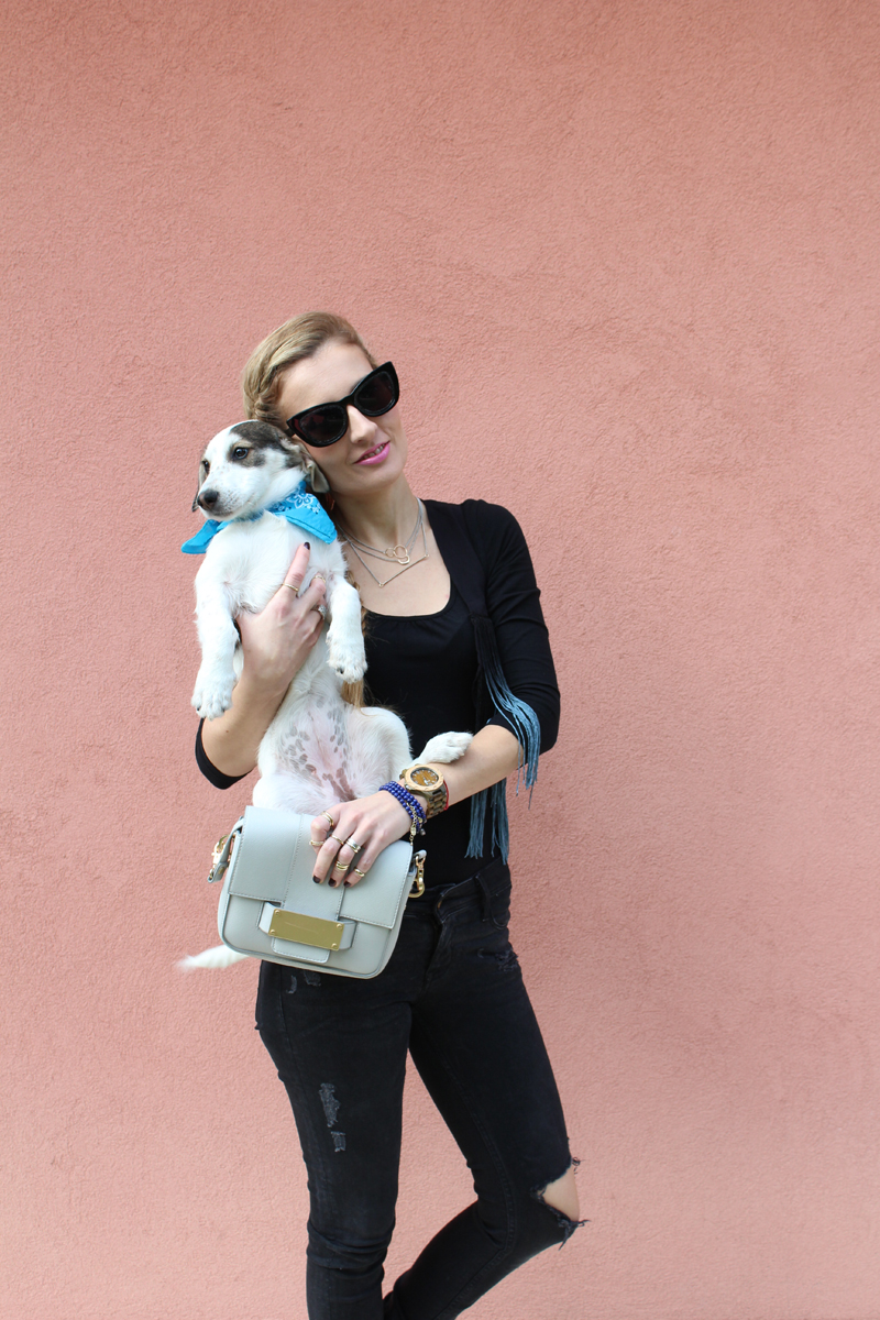 Trench Collection by Sonia Verardo: Fashion blog & a fashion dog ;-)