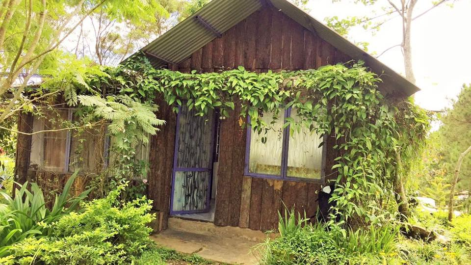 DALAT VIVY PRIVATE TOUR - Pine Hill Homestay