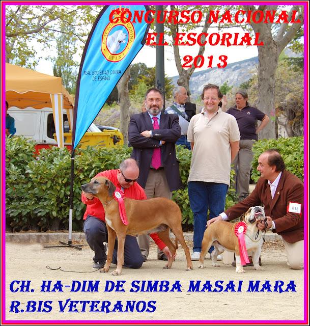 BIS Veteranos - El Escorial 2013.