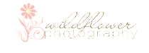 Live (or planning a visit) in the Charlotte area? Check out my photography website!