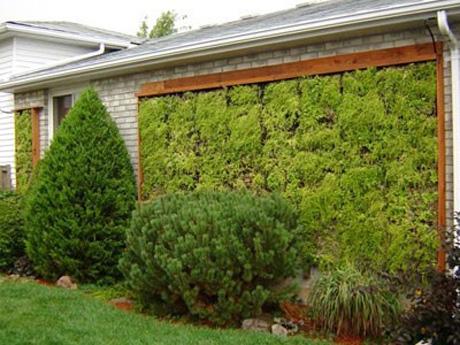 Decoremos nuestro espacio exterior - Jardin vertical terraza ...