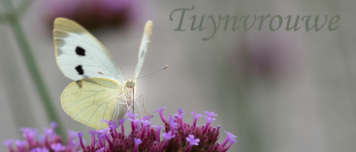 Tuynvrouwe