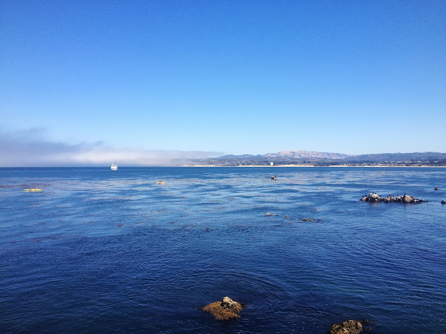 Monterey Bay view on Semi-Charmed Kind of Life
