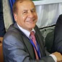 الأستاذ الدكتور عبدالناصر محمد السعيد