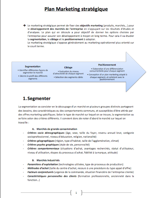 modele de plan strategique pdf
