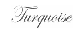 Turquoise Website
