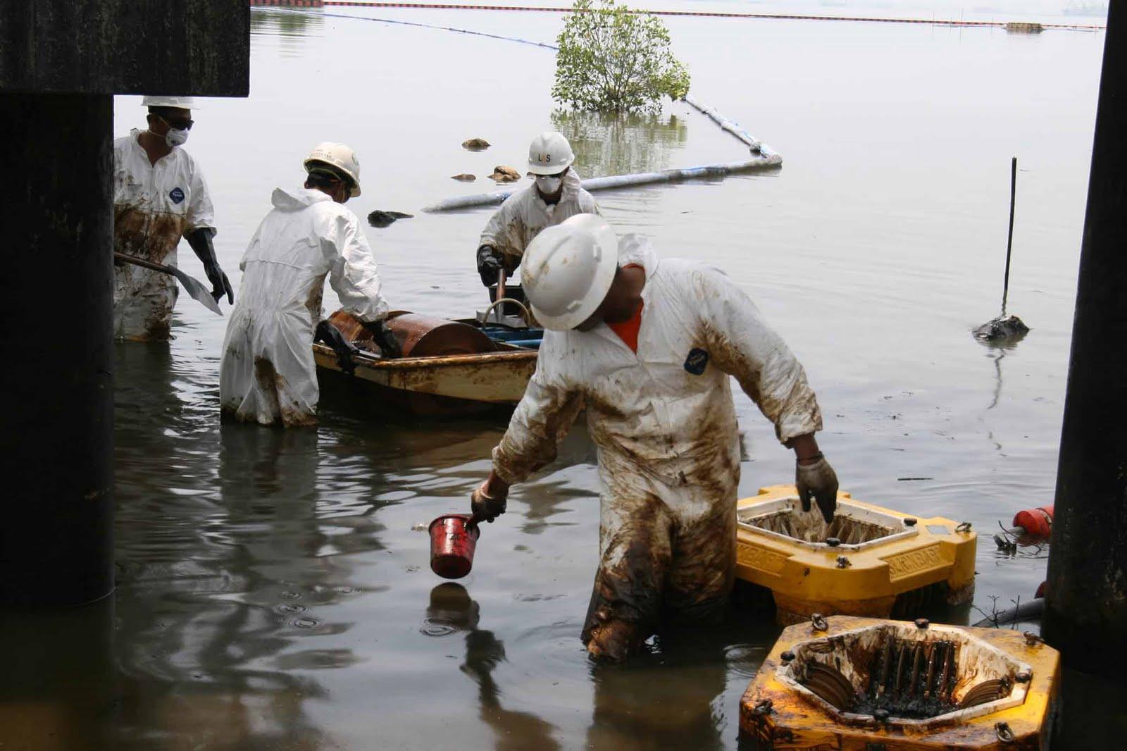 Kasus Pencemaran Laut Timor Dilaporkan ke KPK