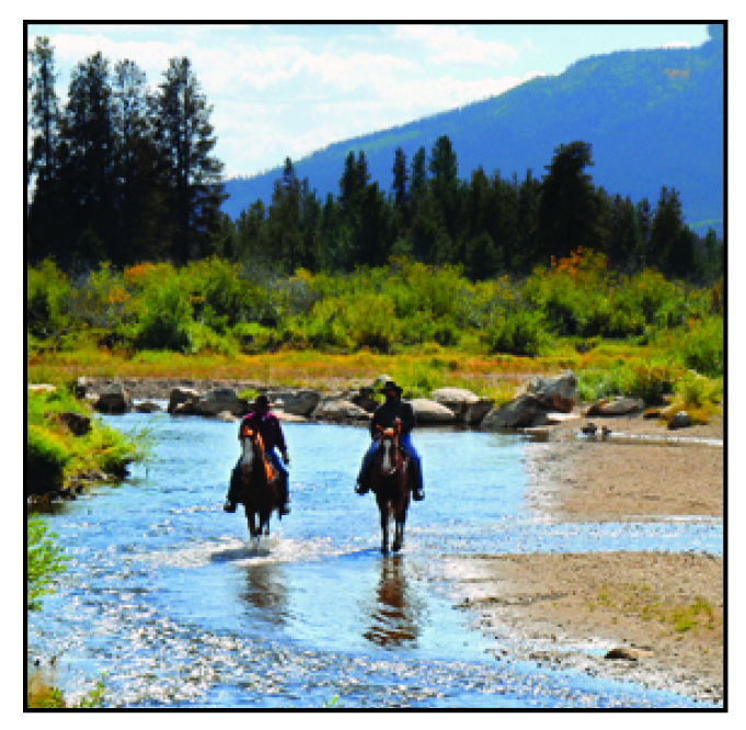 Mules And More Magazine: 5th Annual Trail Riding Guide