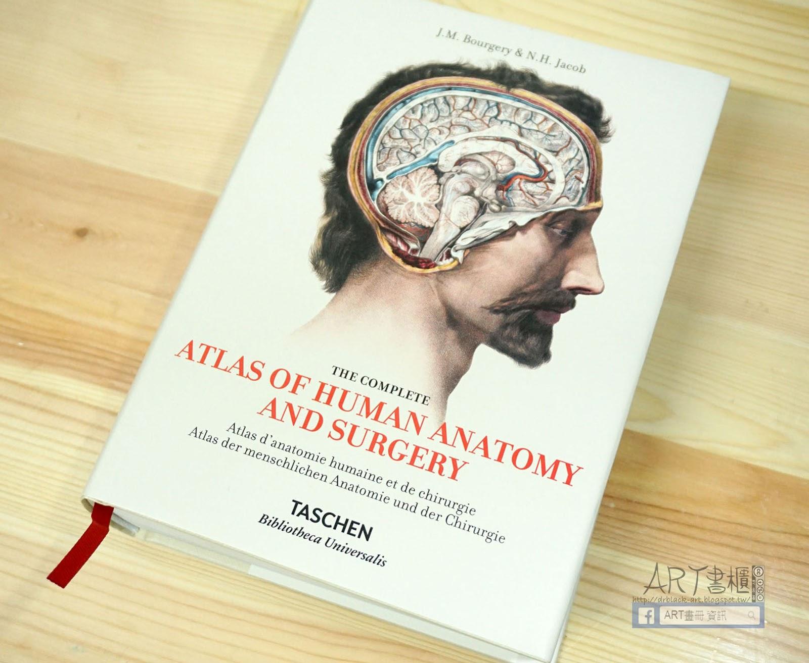 Lujo Atlas Of Surgical Anatomy Ornamento Anatoma De Las