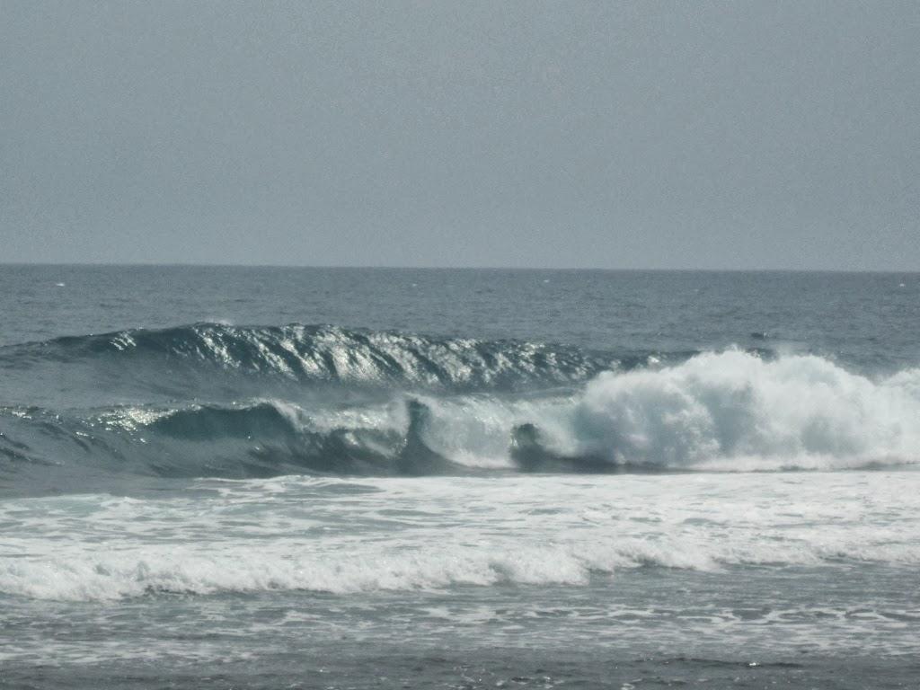 Paddle surf/balade (Perv 9.6 Gong ?) SAM_9517