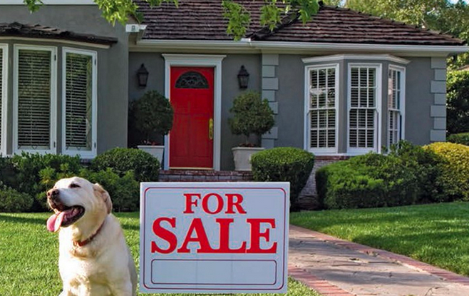 Buying or Selling a Home? Save Money and Increase Your Home's Values with these Tips!