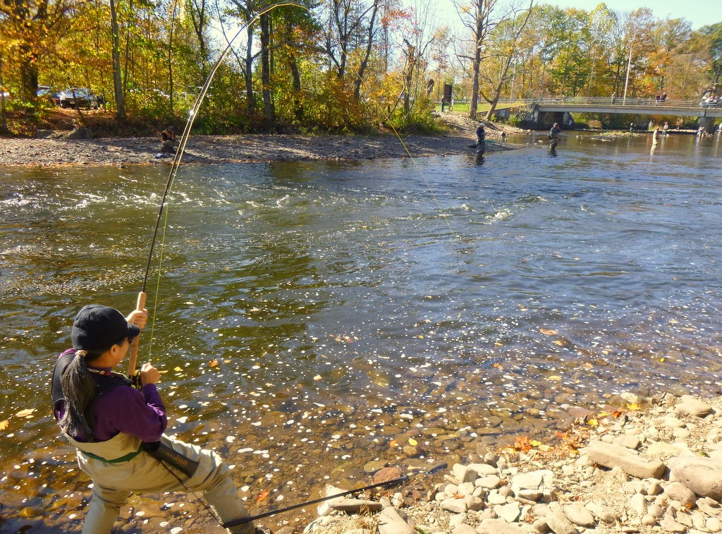 as our autumn ritual we went salmon fishing last weekend in the salmon