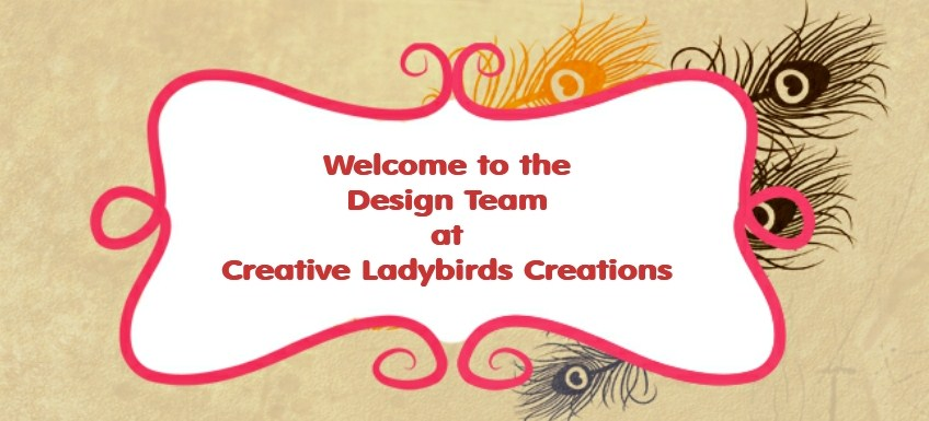 Creative Ladybirds Creations