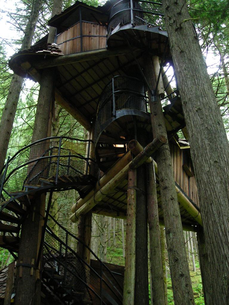 Kućice na drvetu Fantastic-forest-tree-house4