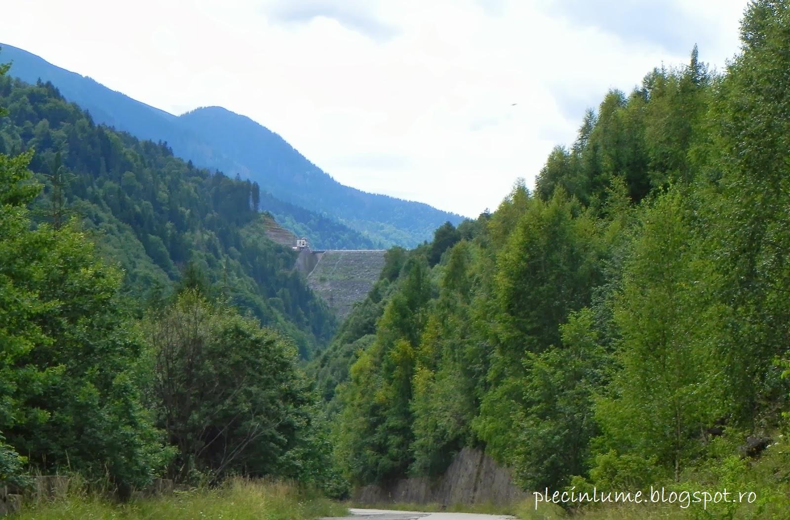 Barajul Tomeasa din Retezat