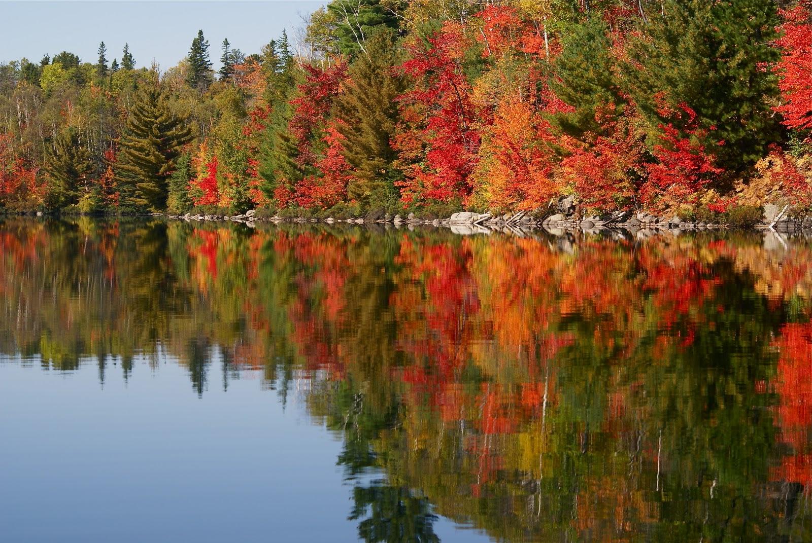 Autumn Lake Scenes Autumn Scenes