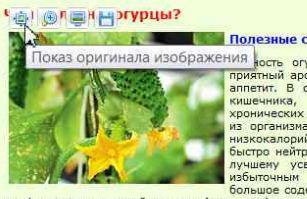 Обработка изображений с помощью плагина Chrome Toolbox