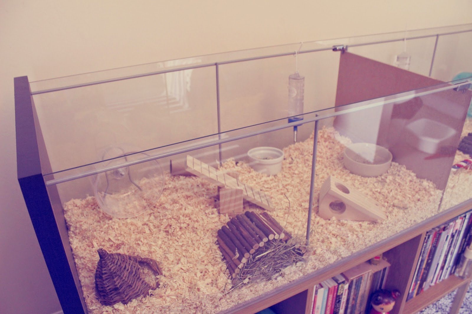 Misadventures of alice ikea detolf hamster cage for Ikea hamster cage