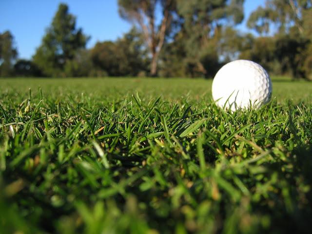 Bagaimana Belajar Golf Sebagai Pemula Ting Ting
