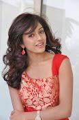 Vithika Sheru glamorous Photo shoot-thumbnail-20