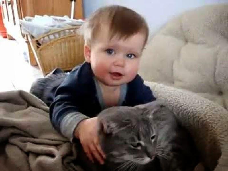Foto bayi lucu sedang bermain dengan kucing kesayangnnya