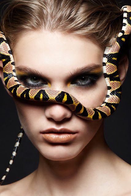 snakes clip