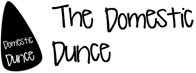 The Domestic Dunce