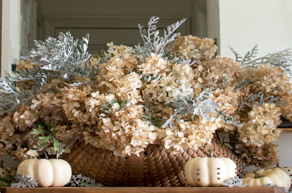 floral arrangment of hydrangea and dusty miller