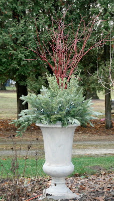 Christmas urn -- The Impatient Gardener
