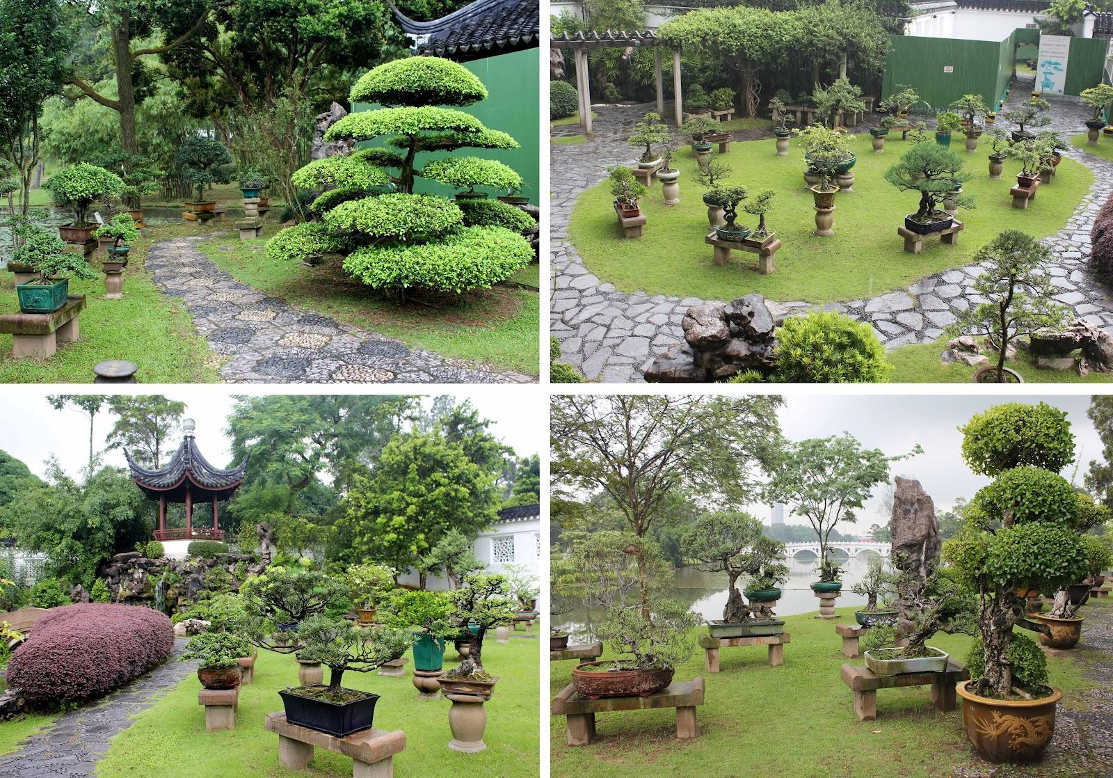 Kigawa39s Bonsai Blog Penjing At Singapore Chinese Garden