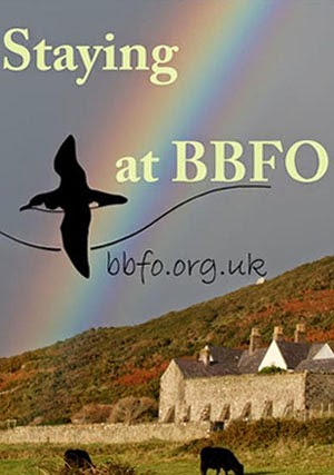 Bardsey Lodge and Bird Observatory