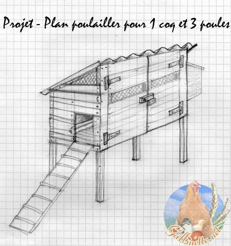 Maigrir avec la m thode montignac phase 1 mon poulailler for Plan pour construire un poulailler avec des palettes